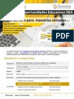 1 Convocatoria OEA-Strucutralia 2018