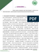 Script GAGUEIRA.pdf