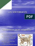 vertebrados  ppt
