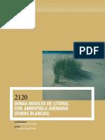 2120.pdf