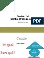 Gestion Del Cambio Organizaciobnal