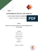 Marketing Internacional Proyecto (1)