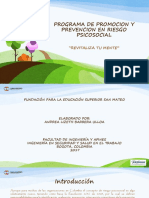 Programa de Promocion y Prevencion en Riesgo Psicosocial