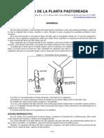 04-Fisiologia de La Planta Pastoreada