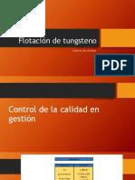 Flotación de Tungsteno.pptx Susti