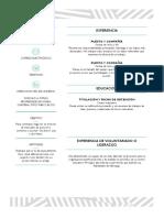 Curriculum CV
