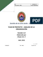 Plan Proyecto Analisis de La Organizacion Cuna Jardin Unsa V1.0