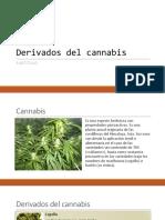 Derivados Del Cannabis y Cocaina