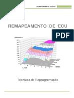 Remapeamento ECM2001.pdf