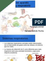 interaccion del aparato circulatorio y respiratorio.pdf