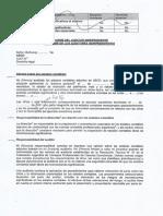 Informe Auditor Indepediente