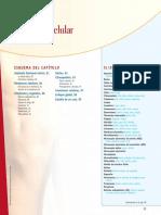 Capitulo3 Anatomia y Fisiologia Thibodeau Patton Quimica