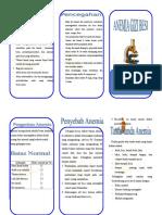 Leaflet Anemia Print