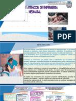 Pae Neonatologia.pptx Puente (1)
