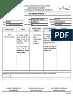 Plan Semanal Primer Grado Formato de Planeaciones