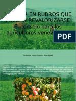 Armando Nerio Guedez Rodríguez - Invertir en rubros que puedan revalorizarse, el consejo para los agricultores venezolanos