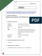 Termino de Referencia Del Distrital de Ichuña
