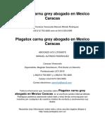 Plagatox Carnu Grey Abogado en Mexico Caracas