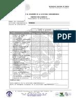 Evaluación Al Desempeño de La Actividad Complementaria (2)