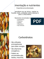 A Alimentação e Nutrientes
