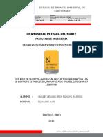 283128477-Estudio-de-Impacto-Ambiental-Curtiembre-Erick-Vasquez-Delgado.pdf