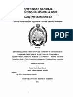 004-2-3-027 CARBONO.pdf