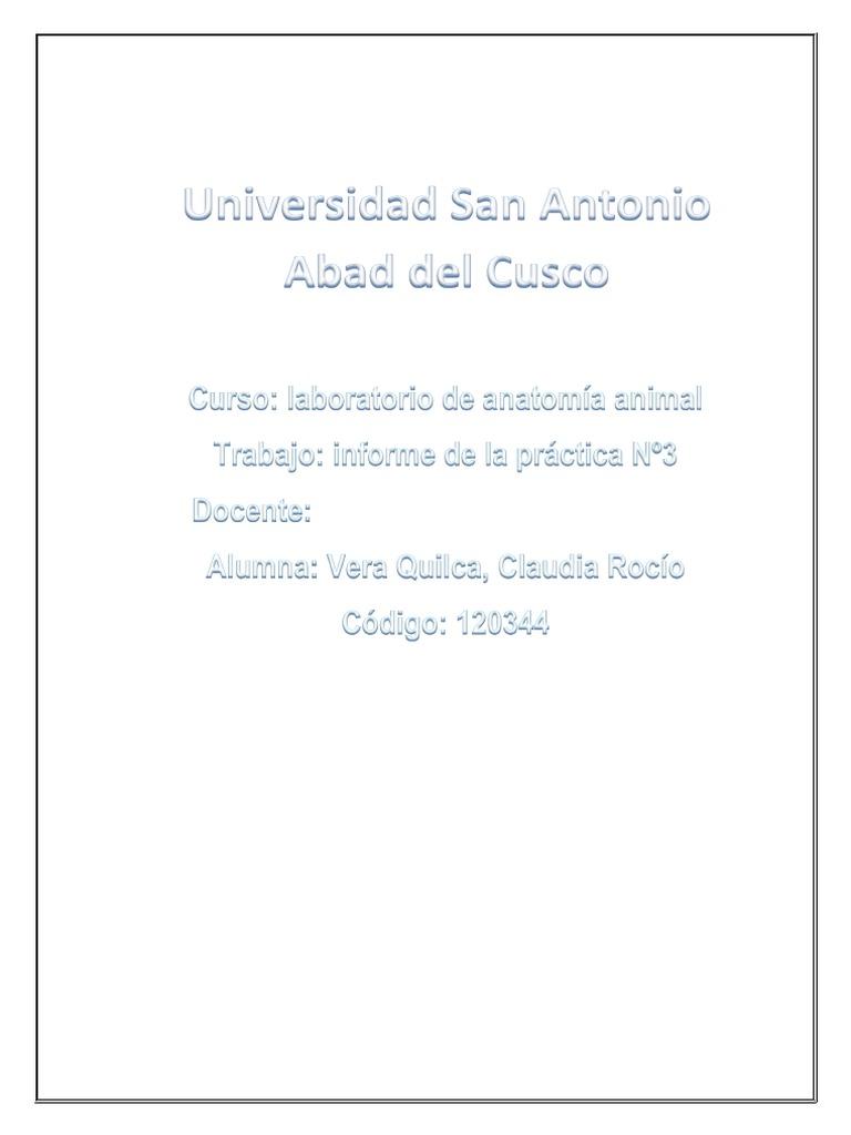 Famoso Anatomía Y Fisiología Humana Con Masteringa & P 9ª Edición ...