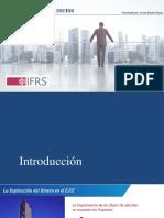ESTADO DE FLUJO DE EFECTIVO IAS 7.pdf