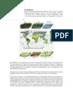 Biomas terrestres y acuáticos.docx