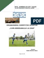 Organizarea Competitiei Sportive Oină