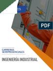 2017_Ingenieria_industrial_semipresencial.pdf
