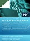 REGULACION DE LA TRANSCRIPCION.pptx