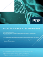 REGULACION DE LA TRANSCRIPCION.pptx