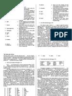 The Endocrine System.pdf