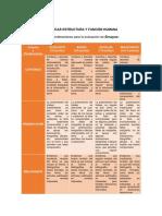 RÚBRICA Estructura y Función Humana 18-3