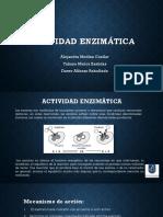 EXPOSICION ACTIVIDAD ENZIMATICA