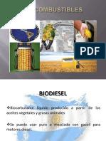 biocombustiblemodificado-121119072137-phpapp02