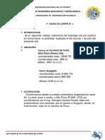 334898323-SAlida-de-campo-min-calvario-puno-geo-docx.docx
