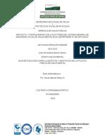 Guia Metodologica Para La Adopcion de La PP-Salud Mental 2016