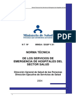 norma técnica.docx