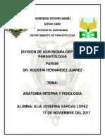 ANATOMÍA-INTERNA-Y-FISIOLOGÍA.docx