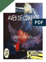 Aves de Combate Jrpo-2017