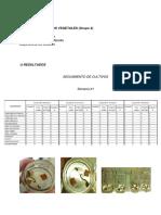 Informe Biotecnología Cultivos Vegetales