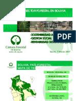 Propuesta Camara Forestal