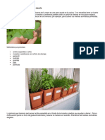 10 Pasos Para Cultivar Un Jardín de Hortalizas Productivo