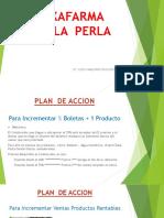 Plan de Accion Pv La Perla