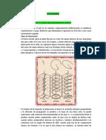 CUESTIONARIO-POLARIZACION (1)