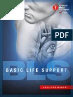 15-1010_BLS_ProviderManual_s.pdf