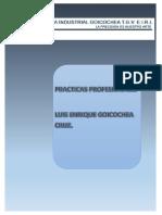 Proyecto Practicas Pre Profesionales t2