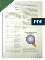 NuevoDocumento-2018-05-09 (1).pdf